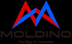 logo-moldino